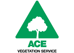 ace-vegetation